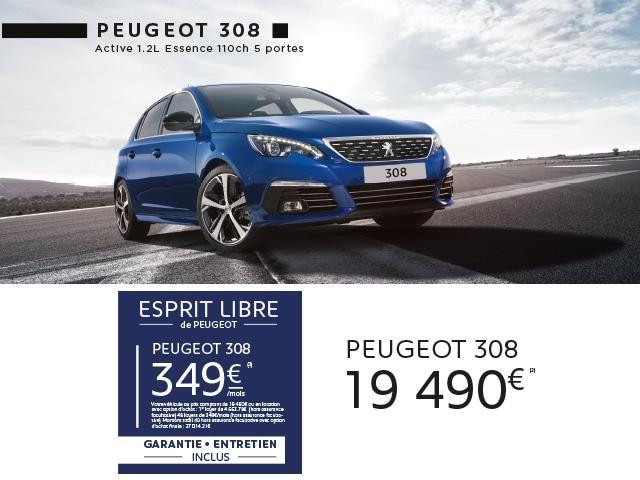Esprit Libre 308